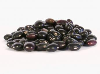 Black Beans: food efficiency
